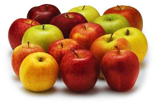 manger-pommes-varietes
