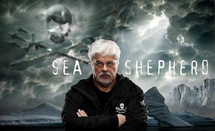 Paul watson fondateur de Sea sheperd végane
