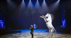 Idéesortiedans toute la France: Cirque Gruss